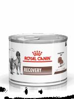 Royal Canin Recovery Blik