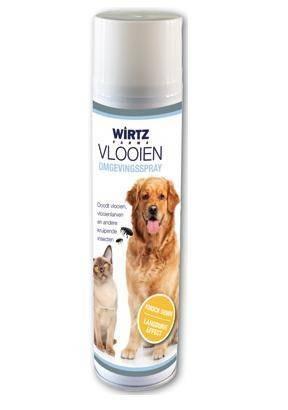 shampoo tegen vlooien hond