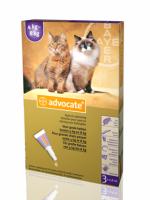 Advocate Spot-On Kat