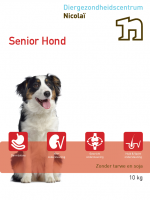 Nicolaï Senior Hond